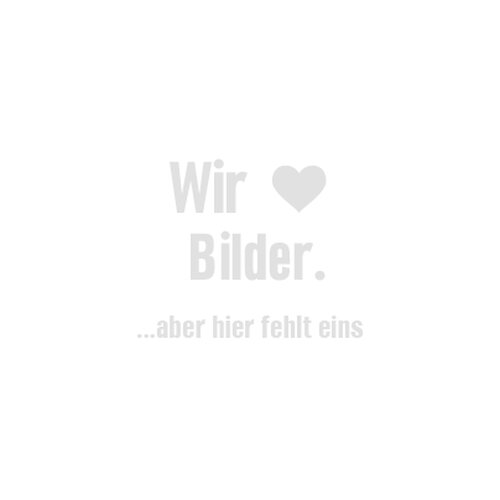 Elvital Sp Total Repair 250ml